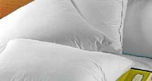 En Moselle, Dodo transforme les bouteilles d'eau en oreillers