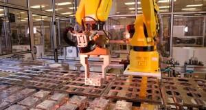 Vosges –  salariés de TRW et de Cimest manifestent pour dénoncer 400 emplois en péril
