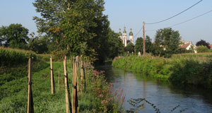 Le Rhin supérieur fait front commun pour protéger son eau