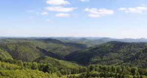 Vosges du nord – la trame verte et bleue s'exporte vers l'Allemagne
